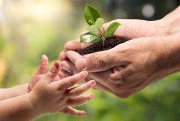 توصیههای محیط زیستی برای نوروز
